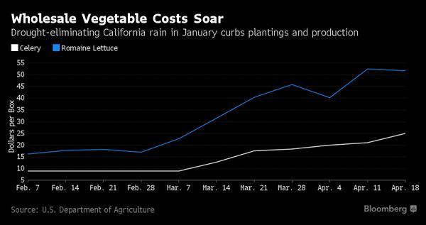 California Weather Sends Vegetable Prices Soaring - Growing