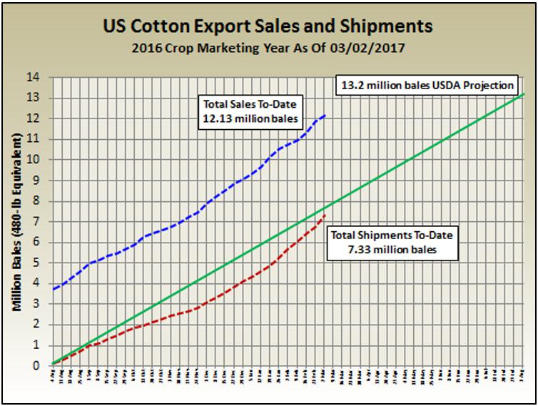 Us Cotton Exports